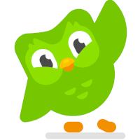 Duolingo Logo Green Owl